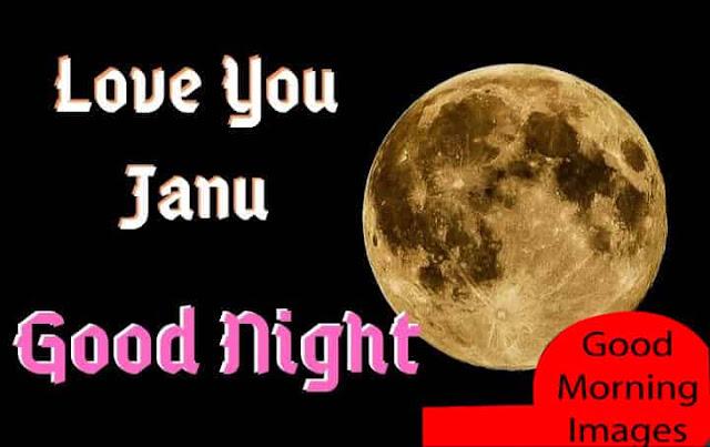 Good Night Love You Janu