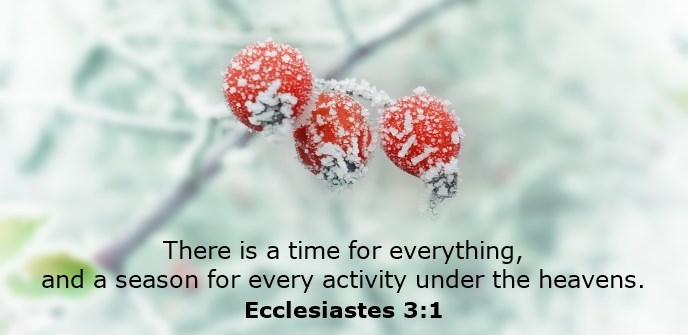 There is a time for everything, and a season for every activity under the heavens.