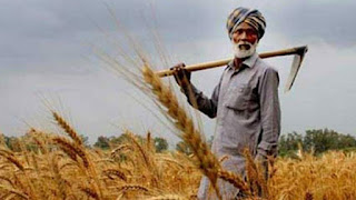 Farmers will get Holi gifts, 8th installment of PM-KISAN will come before the festival, check your name in the list