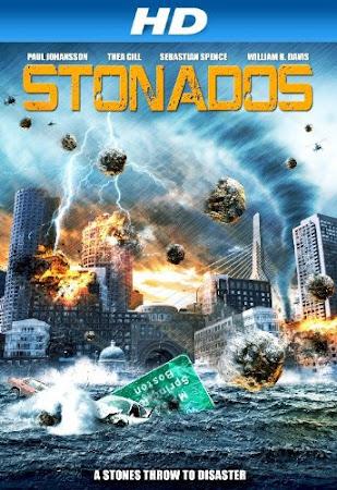 Poster Of Stonados 2013 In Hindi Bluray 720P Free Download