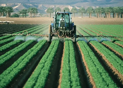 Pesticides, insecticides and other chemicals are indirect sources of water pollution