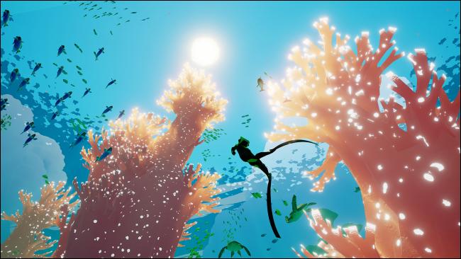 """غواص يسبح تحت سطح المحيط في """"أبزي""""."""