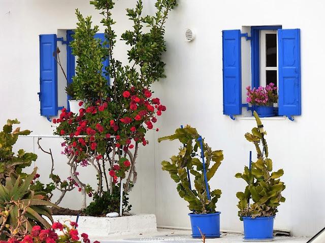 greckie niebieskie okiennice, białe ściany, czerwone kwiaty na tle białego budynku, niebieskie doniece, Mykonos
