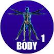 human body in spanish