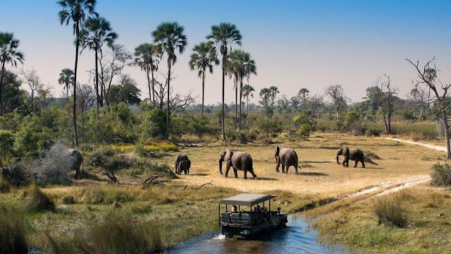 Với những khu vực hoang dã xa xôi và những vùng đất dân cư thưa thớt rộng lớn, tour du lịch Botswana safari là một trải nghiệm rất khác so với các safari ở những nơi khác ở Châu Phi. Cho dù ở khu vực rộng lớn của sa mạc Kalahari và Makgadikgadi Pans hay giữa một mạng lưới các kênh và đầm phá ở Okavango Delta Botswana, khung cảnh rất đặc biệt.
