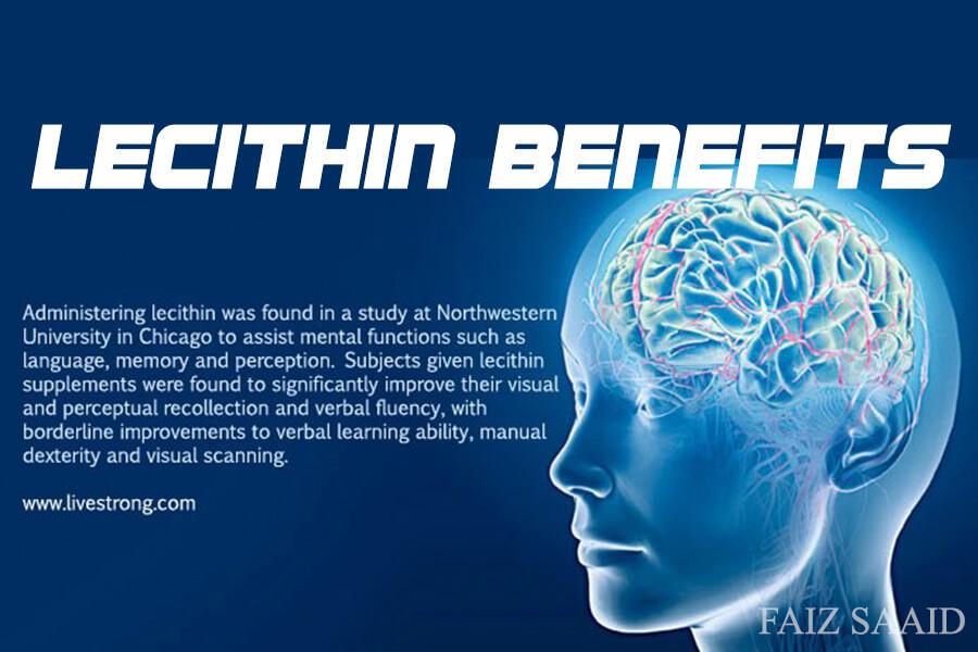 lecithin baik untuk otak,rambut,dan kulit