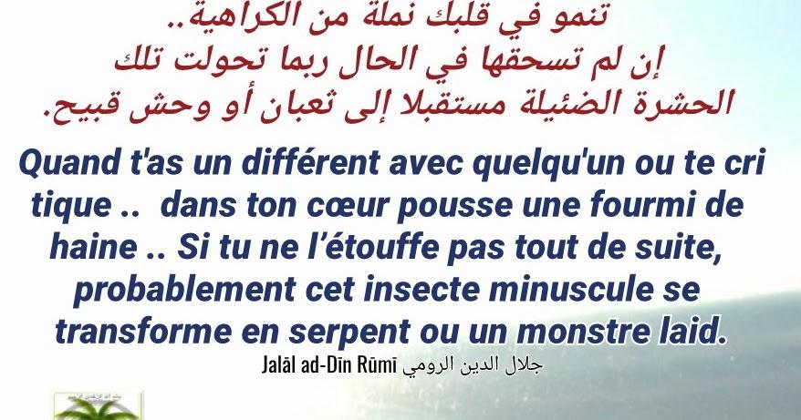 Quisontlesmusulmanscom Citations De Jalāl Ad Dīn Rūmī
