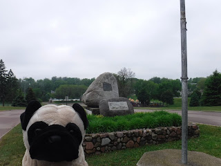 a plush pug appears in frront of a pair of rocks, including a large one with an information plaque. a yellow play structure is visible in the distance.