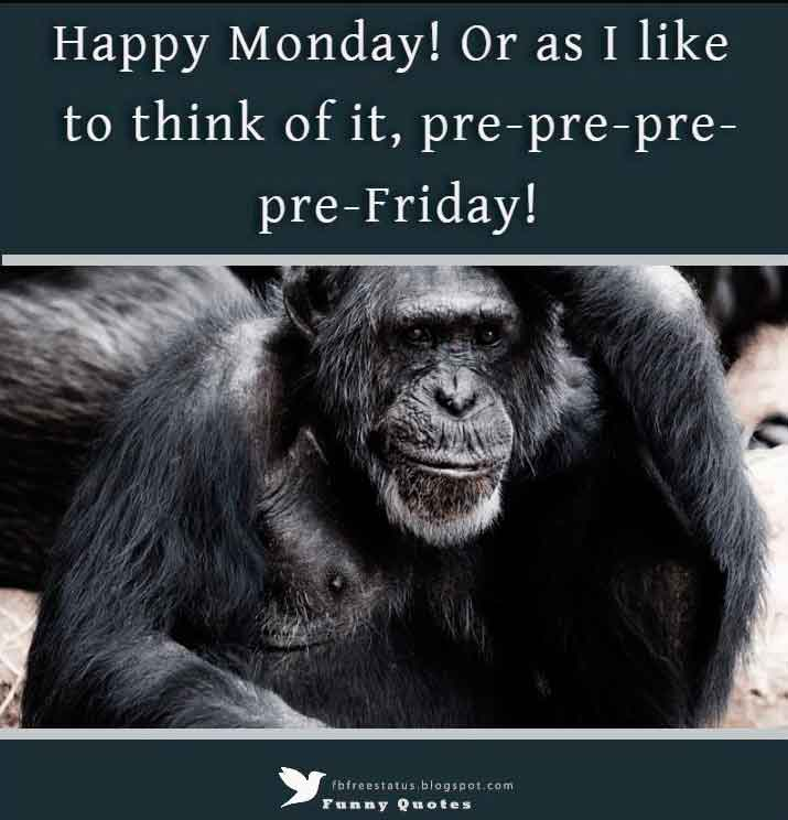 Happy Monday! Or as I like to think of it, pre-pre-pre-pre-Friday!
