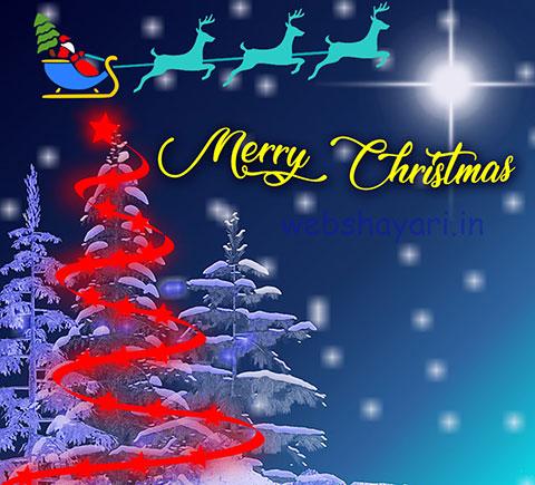 christmas related photos,