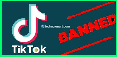 TikTok CEO Discusses About Ban In A Dialogue To India