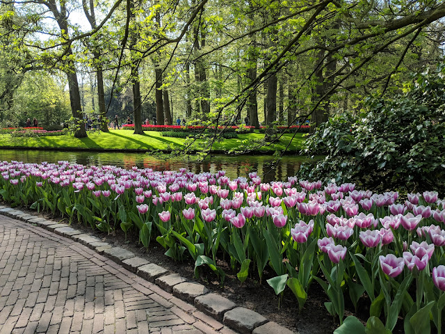 Keukenhof Gardens Excursion Chocolates and Floral Fred Olsen Cruise