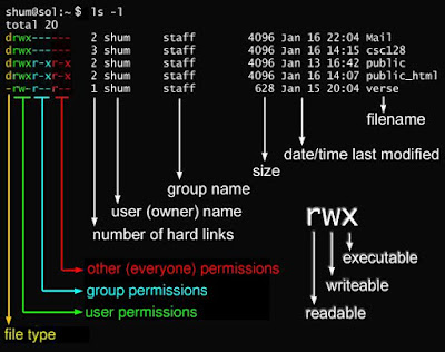 chmod command examples in unix linux