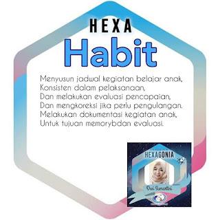 Zona habit Personal