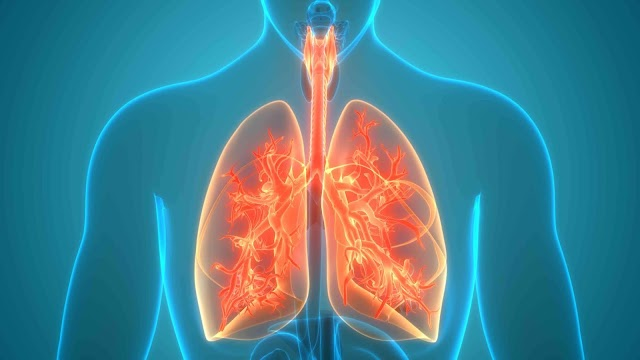 7 Factors that might damage your Lungs
