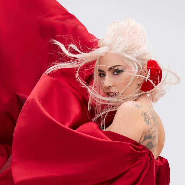 Lady Gaga Teams Up with Valentino for a TikTok Contest