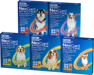 nexgard spectra packages