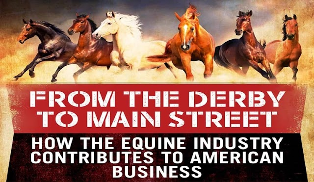 From the Derby to Main Street: How the Equine Industry Contributes to American Business #infographic