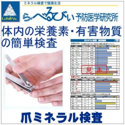 爪から毒素などの検査レポート