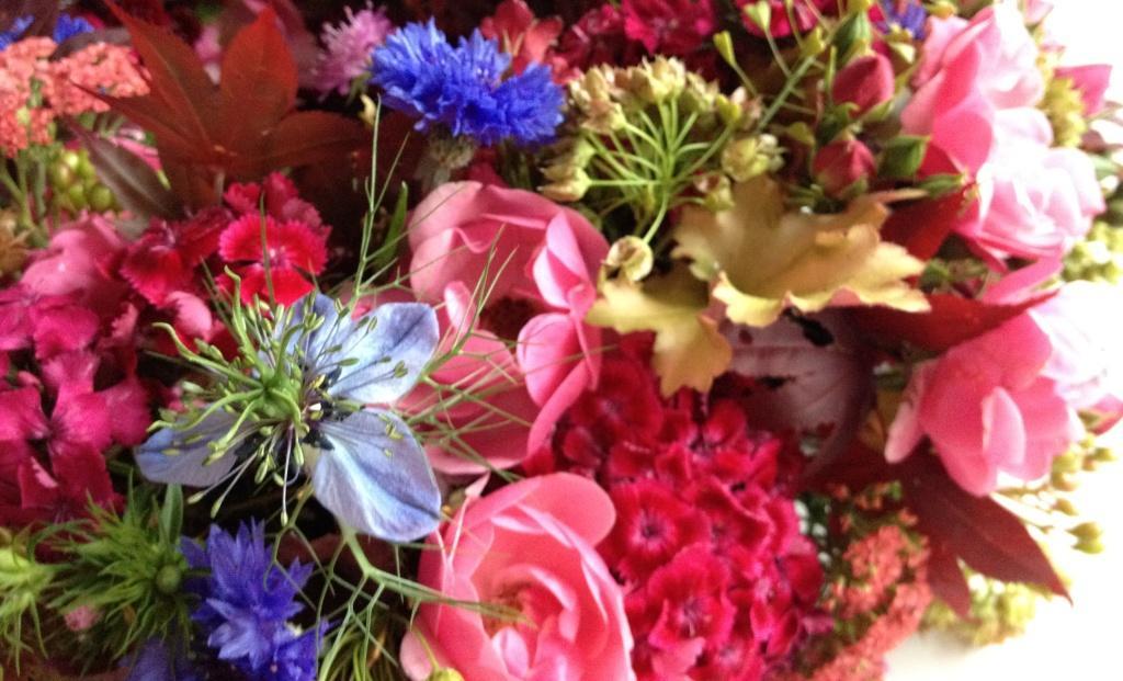 VOM HGEL Farbharmonie und Blumen Gestaltung