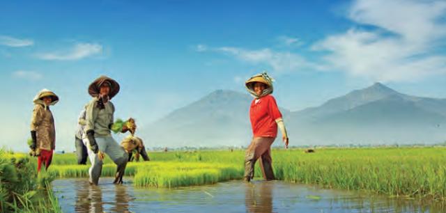Zona Batas Wilayah RI, Kedudukan, Status Warga Indonesia Serta |Asas Kewarganegaraan