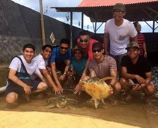 Bali-turtle-island