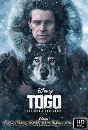 Togo [1080p] [Latino-Ingles] [MEGA]