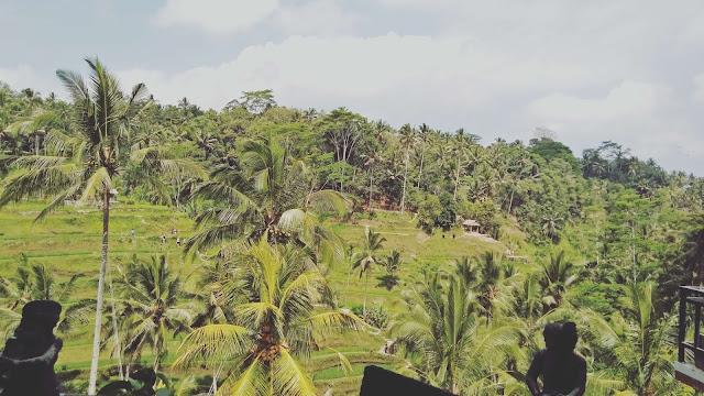 tegalalang