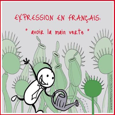expression en français, avoir la main verte, expressions françaises, FLE, le FLE en un 'clic'