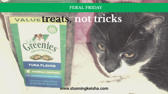 Feral Friday: Treats, Not Tricks