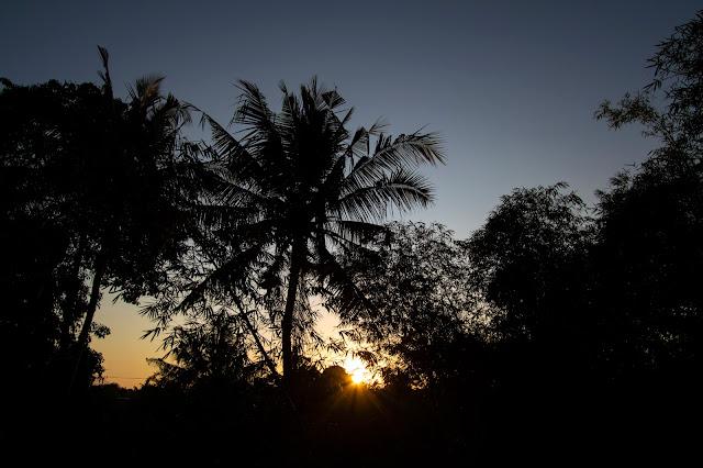 Alba ad Ubud-Bali