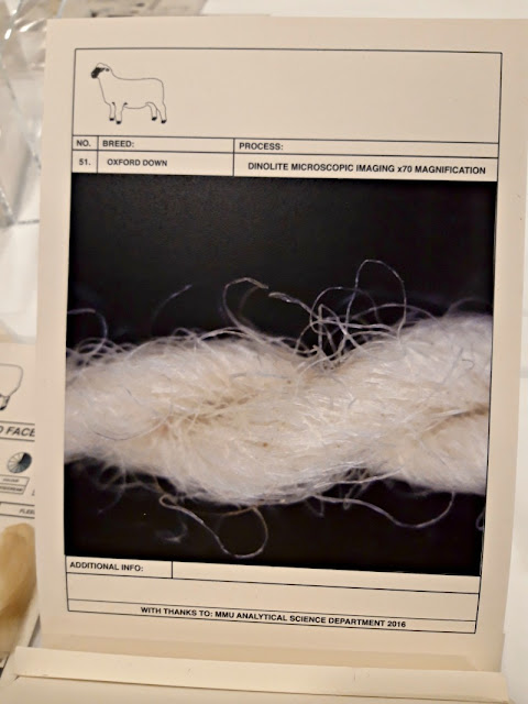 Microscope picture of yarn - The Woolist talk - Theatr Clwyd Sept 2019