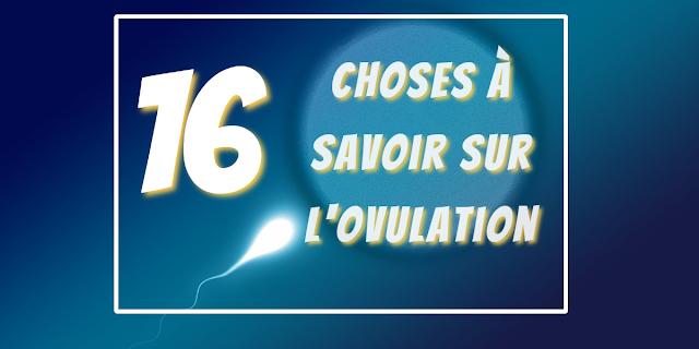 Qu'est-ce que l'ovulation? 16 choses à savoir sur votre cycle menstruel