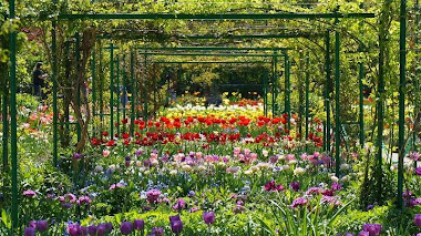 Celebrando la primavera en el jardín de Monet: Clos Normand