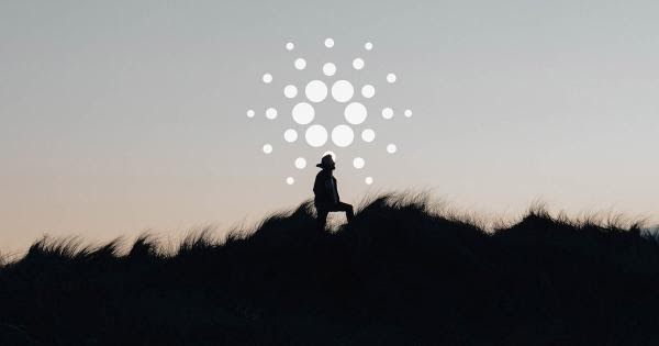 cardano-becomes-the-most-decentralized-network-on-the-market-with-majority-of-ada-supply-staked