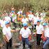 Pertamina EP Bantu 5.000 Bibit Mangrove Dan 2 Perahu Wisata