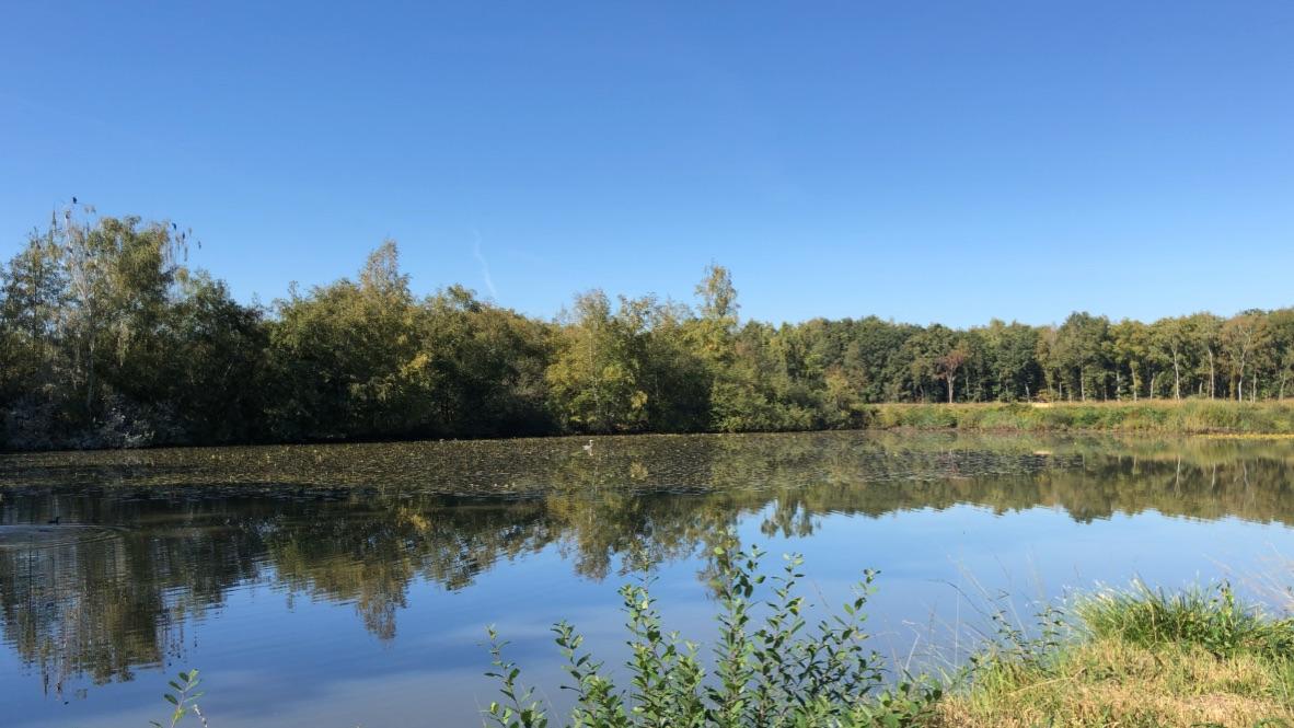 natural reserve De Wijers