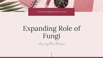 Role of Fungi