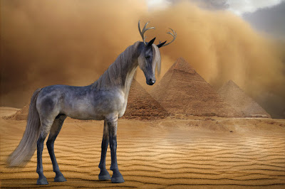 Mythical desert horse with reindeer horns