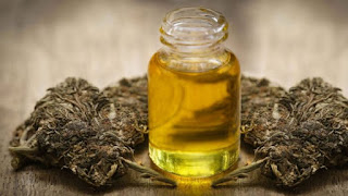 Jesus Used Cannabis Oil To Perform Healing 'Miracles' – Expert Claims