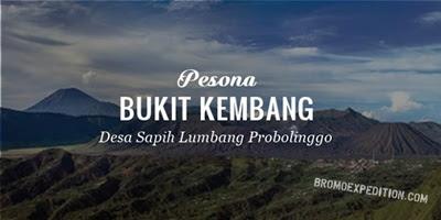 Bukit Kembang Lumbang Probolinggo, Negri diatas Awan Wisata Gunung Bromo