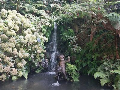 jardim tropical garden