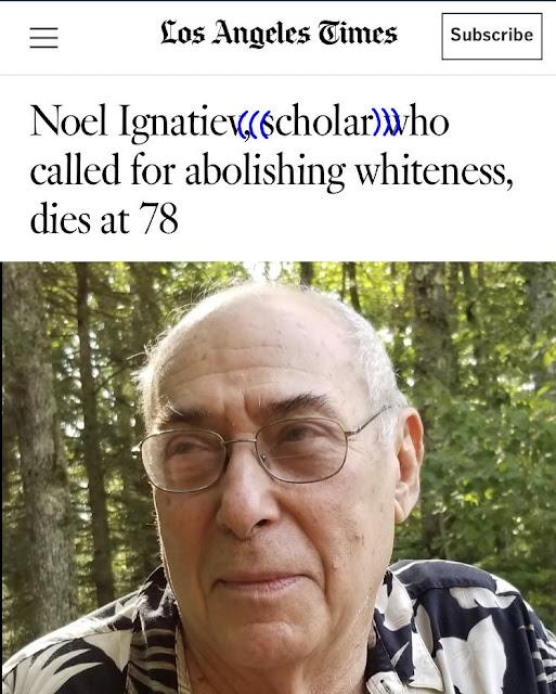 RACISM%2BIGNATIEV%25289%2529.jpg