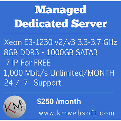 managed dedicated server with free 7 IP  and 1000GB SATA 3