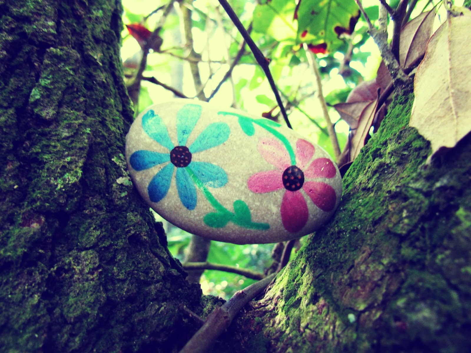 A painted floral rock design found in the trees of Hammock Park in Dunedin, Florida