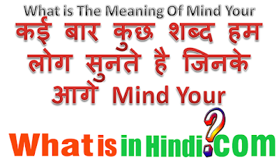 What is the meaning of Mind your in Hindi