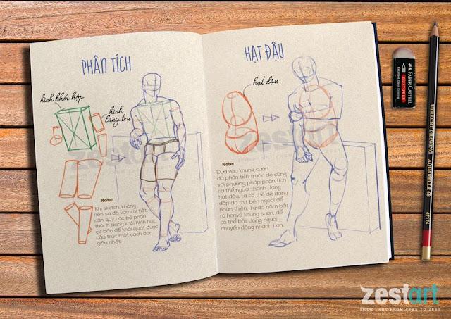 Khóa học vẽ ký họa dáng người dành cho người bắt đầu, khóa học vẽ người cơ thể người