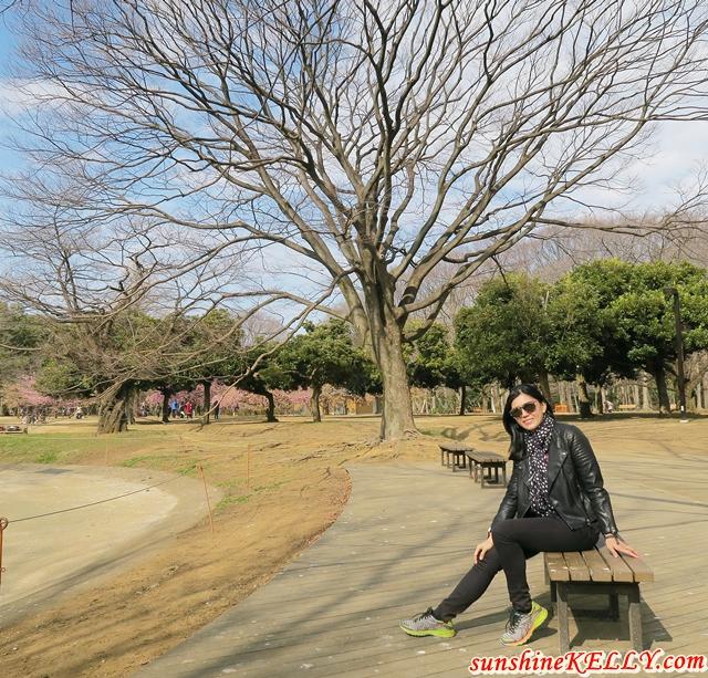 Yoyogi Park: Spring 2017 in Tokyo