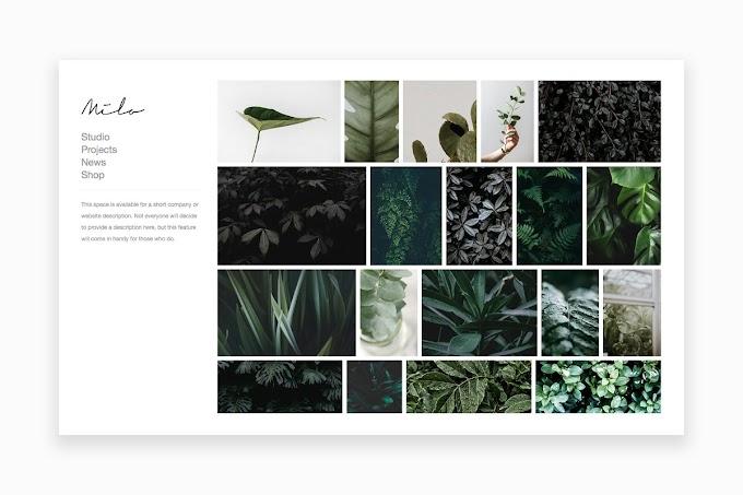 Download Theme Portfolio - Milo Portfolio WordPress Theme