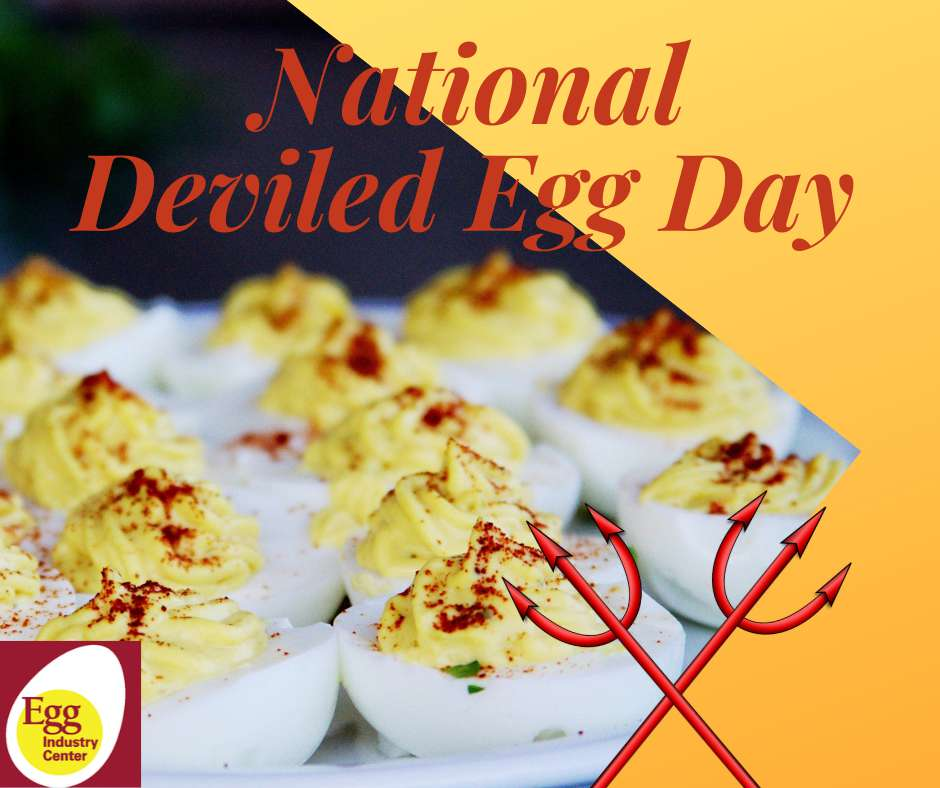 National Deviled Egg Day Wishes Awesome Picture